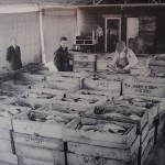 Fish Box Whitby